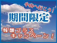 小山・栃木 デリバリーヘルス 小山クレヨン